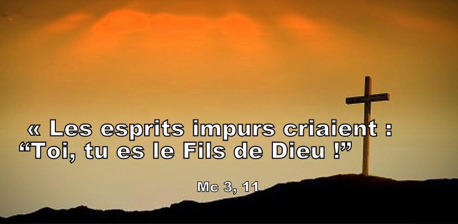 """Mc 3.7-11 Les esprits impurs criaient : """"Toi, tu es le Fils de Dieu !"""" -  Jardinier de Dieu"""