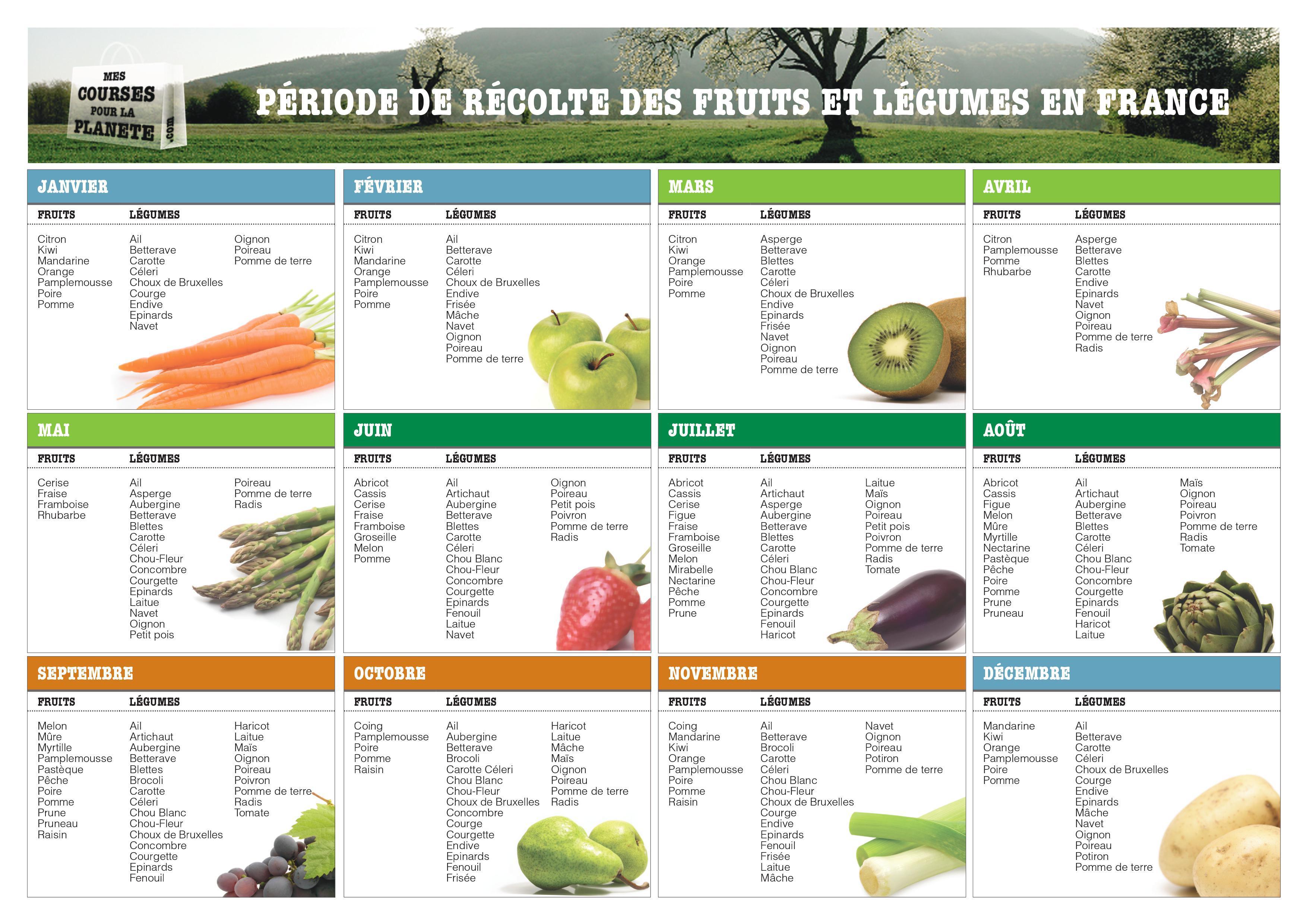 Les fruits et l gumes de saison calendrier pdf par - Guide pratique du potager en carres ...