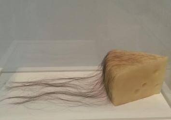 Long Haired Cheese